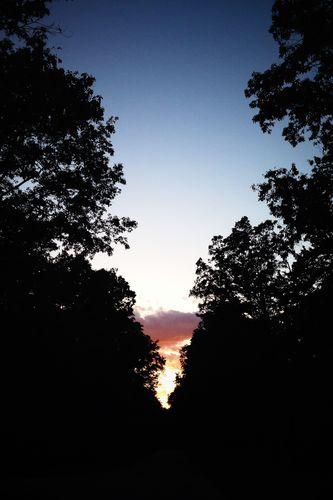 A Rorschach Sunset